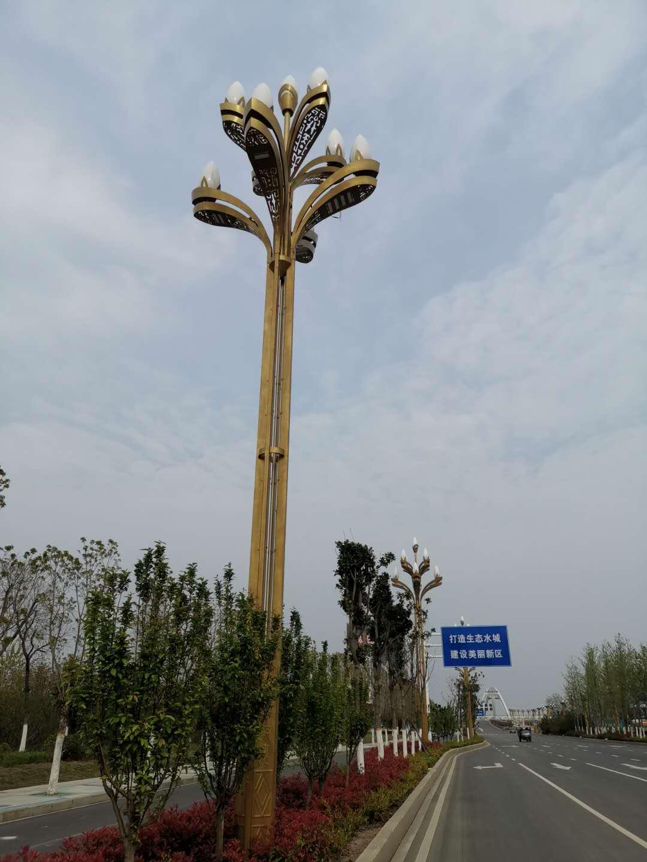 漯河238省道15米道路灯工程